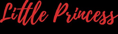 logo kolekcji little princess mohito christmass time